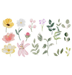 Watercolor hand drawn colorful spring flower and vector