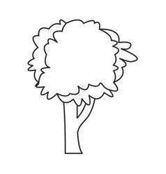tree natural foliage image outline vector image vector image