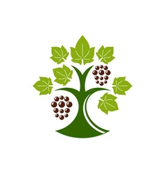 Grape-Tree-in-color-380x400 vector image