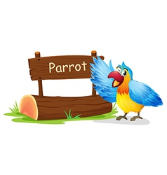 A colorful parrot blinking his eye vector