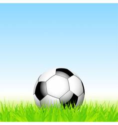 football and grass vector image vector image