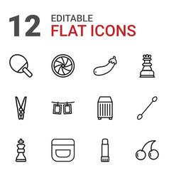 12 closeup icons vector image