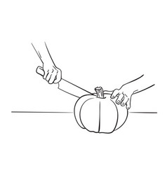 close up hands cutting pumpkin with knife drawing vector image