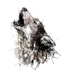 Colored hand drawing of a howling wolf vector image