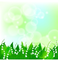 Spring card background with lily of the valley vector image