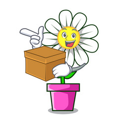 with box daisy flower character cartoon vector image