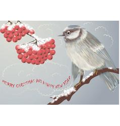 bird and winter berries vector image vector image