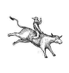 Bull riding rodeo cowboy drawing vector
