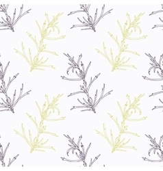 Hand drawn tarragon branch stylized black and vector image