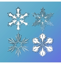 set of lace snowflakes vector image