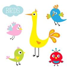 Cartoon bird set Cute cartoon character Funny vector image
