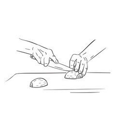 Close up hands cutting onion with knife vector