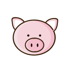 Colorful picture face cute pig animal vector