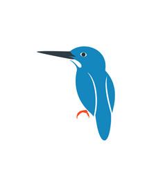 Kingfisher bird vector