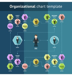 Business organization structure vector image