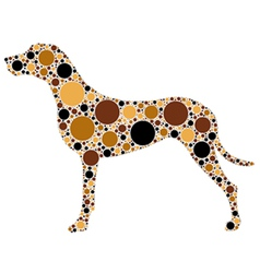 spotted dog vector image vector image