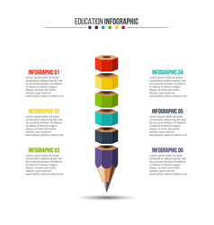 education infographic with 6 options vector image