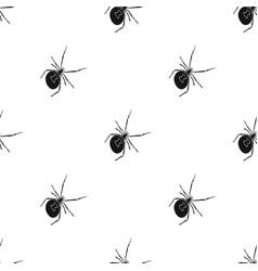 An arthropod bug is an insecta spider a vector