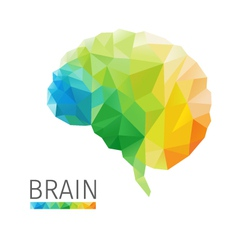 Brain polygon vector