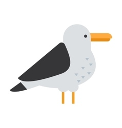 Great gull bird vector image