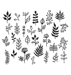 Set hand-draw floral elements vector