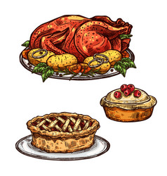 Thanksgiving day turkey pie dinner sketch food vector