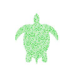 turtle in green design vector image