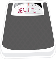 Beautiful Scale vector image vector image