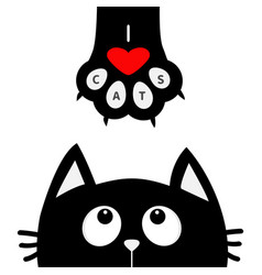 black cat looking up to paw print with red heart vector image