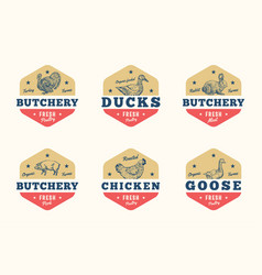 Farm meat and poultry abstract signs vector