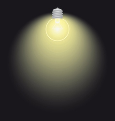 lighting bulb lamp vector image