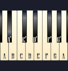 Piano keys note names vector
