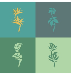 Tropical plants Set of design elements vector image vector image
