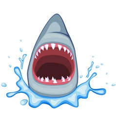 shark mouth vector image vector image