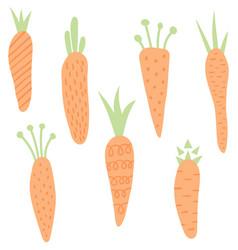 carrots set vector image