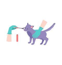 Animal testing vector