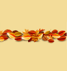 autumn background layout decorate with leaves vector image