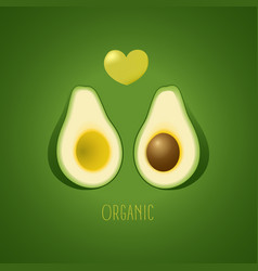 avocado halves on a gradient background vector image