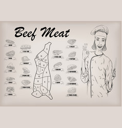 Beef cow carcass cut parts info graphics poster vector