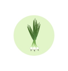 Icon green onion vector image