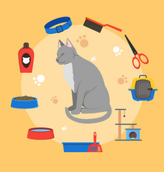 cartoon cat care concept vector image