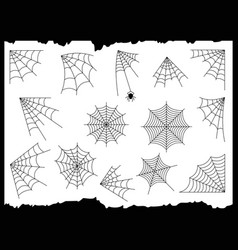 cobweb set vector image