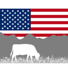 Cow alp and flag of USA vector image