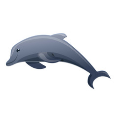 Dolphin icon cartoon style vector
