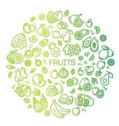 Fruits doodle drawing collection vector