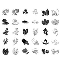 herb and spices blackoutline icons in set vector image