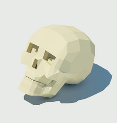 human skull low poly for vector image