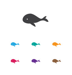 Of zoo symbol on whale icon vector