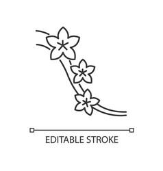Sakura pixel perfect linear icon blossom on tree vector
