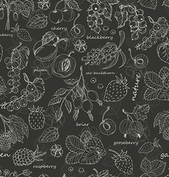 seamless pattern with berries on dark background vector image